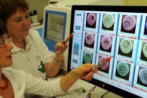 Изображение №3: ПГД эмбриона при ЭКО - что это такое? - ЭКО-блог