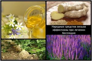 Изображение №0: Лечение бесплодия народными средствами - ЭКО-блог