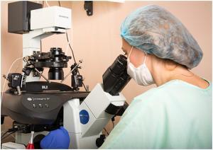 Изображение №0: ЭМИС - Электронно-микроскопическое исследование - ЭКО-блог