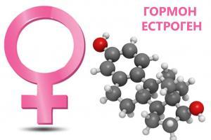 Изображение №2: Эстрогены - это женские гормоны - ЭКО-блог