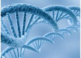 Генетические исследования и анализы - ЭКО-блог