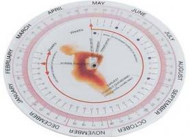 Изображение №1: Рассчитать срок беременности - ЭКО-блог