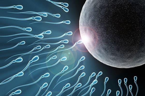 kak-povisit-fertilnost-spermi-u-muzhchin
